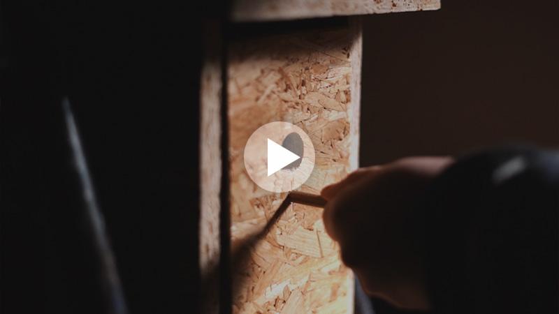 Vogelhaus Erstellen Filmproduktion