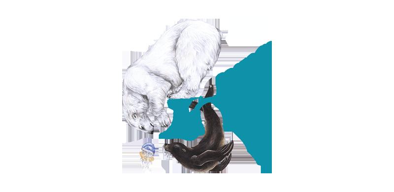 imagefilm zoo rostock eyeris filmproduktion